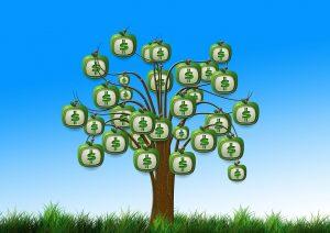 Cash Articles